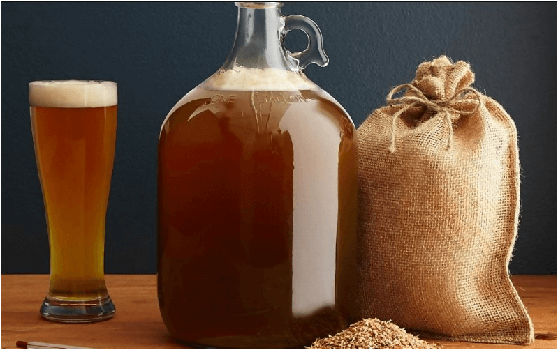 beer made by beer brewing equipment kit